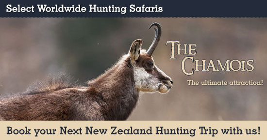 Chamois Hunting in New Zealand