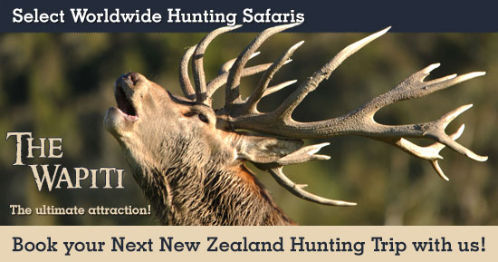 Wapiti (Elk) Hunting in New Zealand