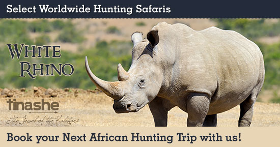 Hunting White Rhino in Southern Africa