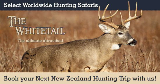 Whitetail Hunting in New Zealand