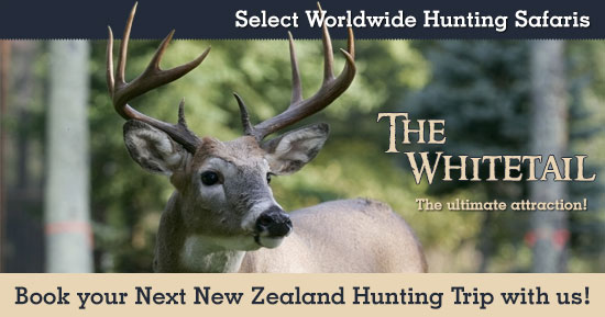 Hunting Whitetail in New Zealand