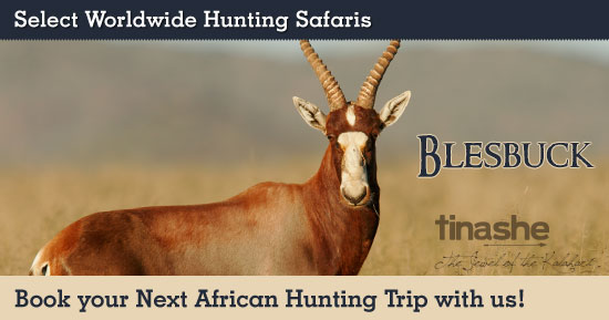 Hunting Blesbuck in Southern Africa