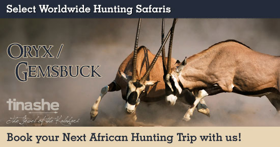Hunting Gemsbuck in Southern Africa