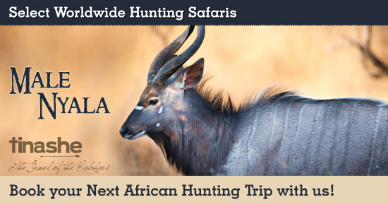 Hunting Nyala in Southern Africa